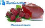 Малина: рецепты от кашля