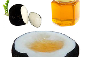 Рецепт редька с медом от кашля